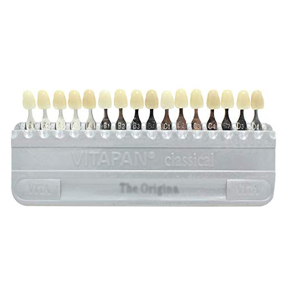 クレデンシャル指導する汗PochiDen 歯科ホワイトニング用シェードガイド 16色 3D 歯列模型ボード