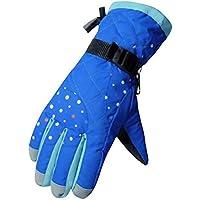 厚手の防風スポーツグローブ冬のサイクリングスキーグローブ、ブルー