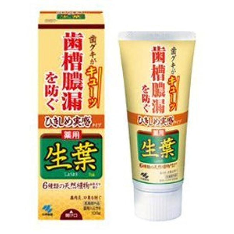 大きい同種のバースひきしめ生葉(しょうよう) 歯槽膿漏を防ぐ 薬用ハミガキ ハーブミント味 100g × 24個