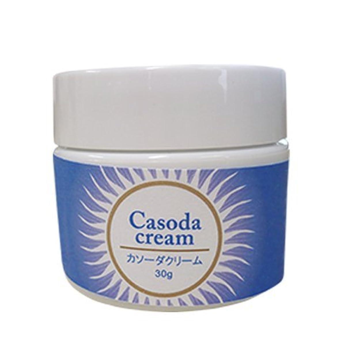 つぶす可能にする付添人casoda カソーダ クリーム 30g