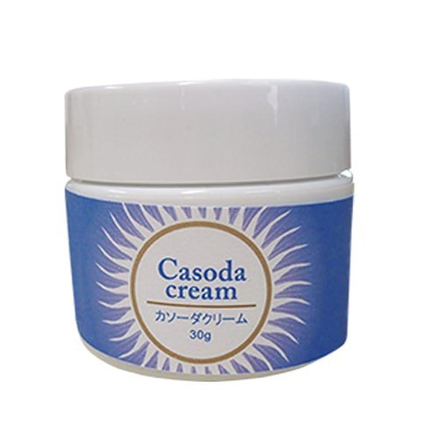汚物少なくとも飛行機casoda カソーダ クリーム 30g