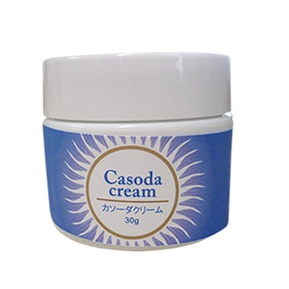 提案従順なストライドcasoda カソーダ クリーム 30g
