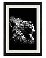 ライオン 動物の写真木製黒額縁アートポスター(40cmx60cm)