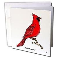 マークグレースGRACEVISIONS Birds–鳥Red Cardinal 3onホワイト–グリーティングカード Set of 12 Greeting Cards
