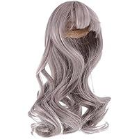 Fenteer 美しい 人形ウィッグ 長い髪 おしゃれ 長い髪 ヘア 1/4 BJD SDドルフィードールズ適用 DIYウィッグ人形 4色選べる  - グレー