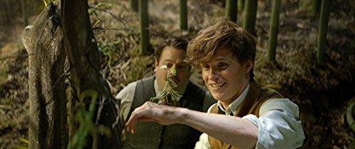 ファンタスティック・ビーストと魔法使いの旅 ブルーレイ&DVDセット(初回仕様/2枚組/デジタルコピー付) [Blu-ray]