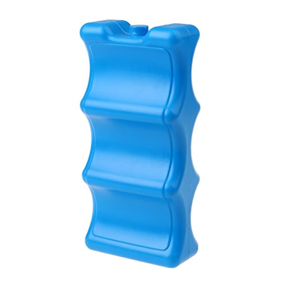 いうアルファベットアンティークBaosity プラスチック 再利用可能 キャンプ ハイキング ランチフリーザー アイスブロックケース クーラーボックス 全2色