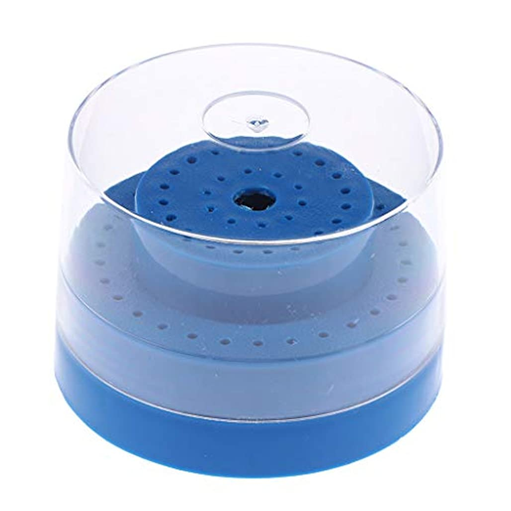 誤解水を飲むピアノP Prettyia 60穴 ネイルドリルビットホルダー スタンド ディスプレイ 収納ボックス カバー付き 全3色 - 青