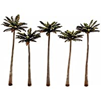 Classics Tree, Palm 4.75-5.25'(5) [並行輸入品]