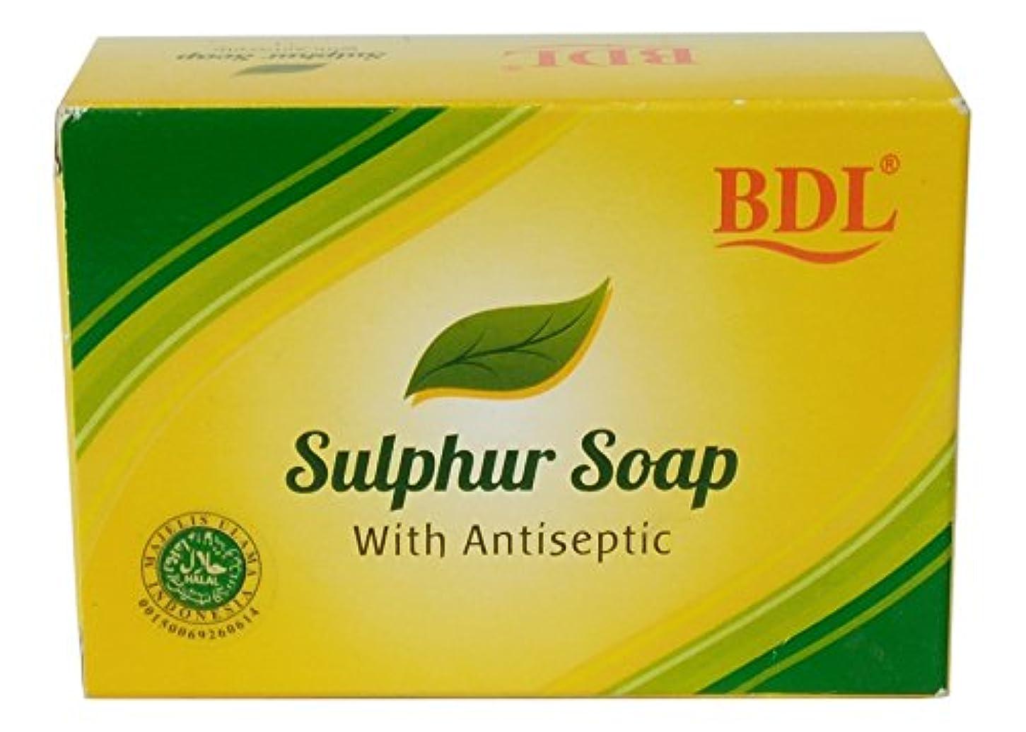レビュー権限恩赦BDL 防腐剤、100グラムで硫黄固形石鹸