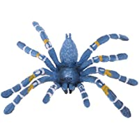 MagiDeal Realistic Science Plastic Animal Model Figure Brazilian Blue Spider Figurine Children Kids Educational Toy Home Decoration Collectibles Kids Story Telling Props