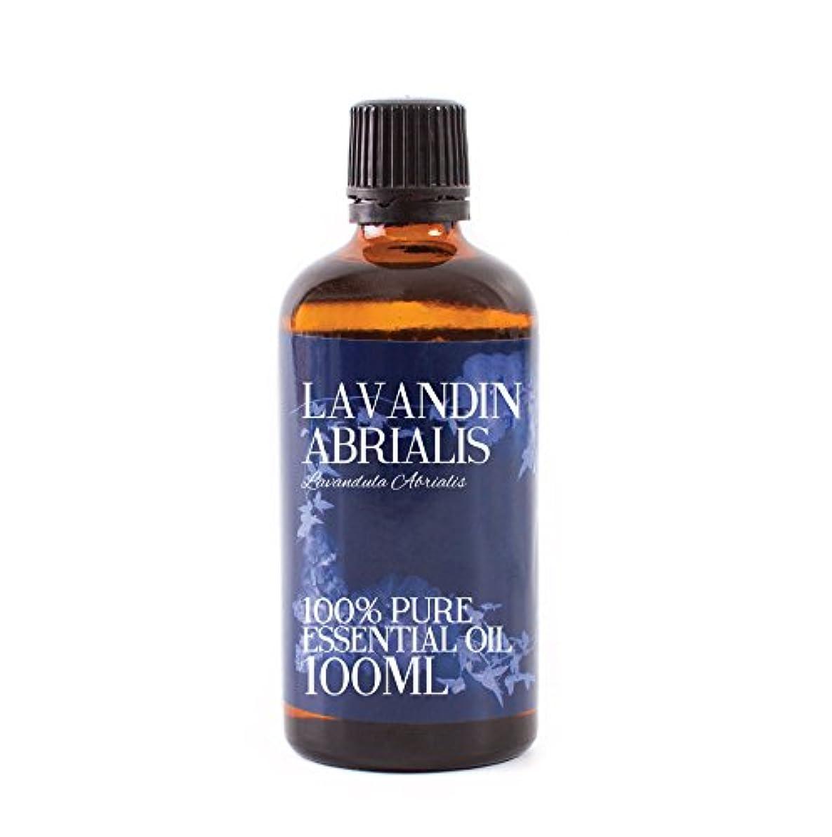 ピーク構造的抑圧Mystic Moments   Lavandin Abrialis Essential Oil - 100ml - 100% Pure