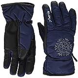 phenix(フェニックス)レディーススキーグローブ Performance W's Gloves PS888GL65