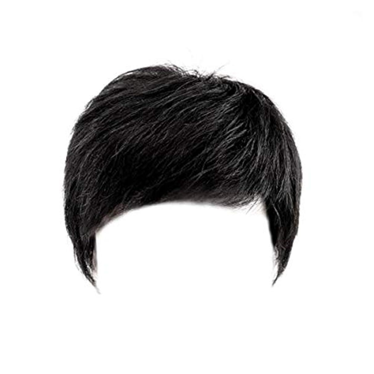 溶融ベルトスカイCN ウィッグ男性ショートヘアメンズかつらハンサム中年ヘッドトップの交換の本格ヘアカバーホワイト髪のセットの帽子 (Color : Black)