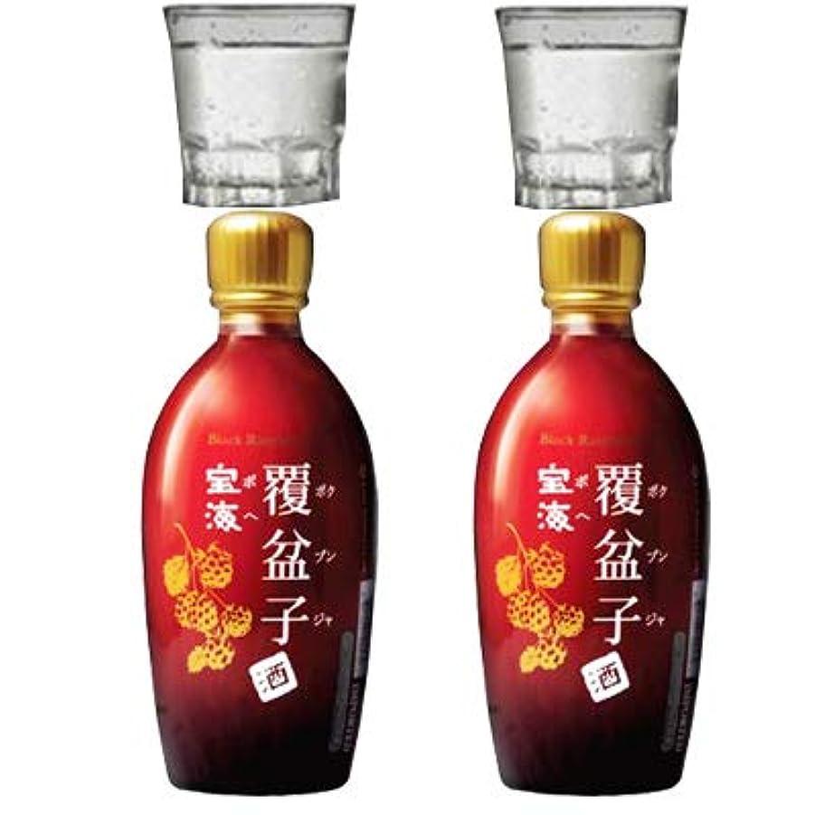 スティック堤防戦士『宝海』覆盆子(ボクブンザ)瓶 375mlx2本 +焼酎グラスx2個(デザインランダム(選択不可)) 甘くまろやかな味わいの健康酒!アルコール 14度