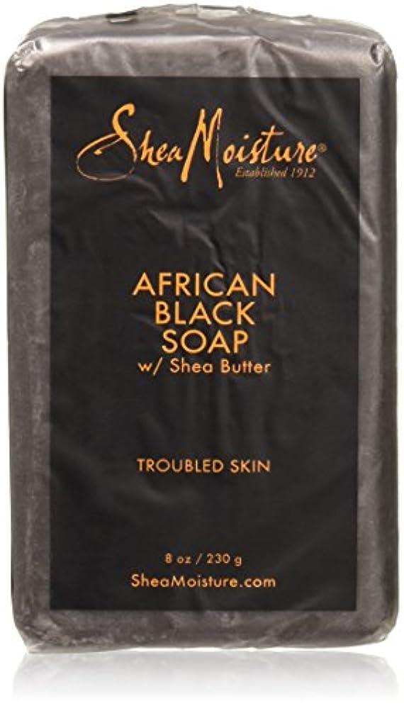 概念ゴールデンホステルShea Moisture - シアバターが付いているアフリカの黒い棒石鹸 - 8ポンド