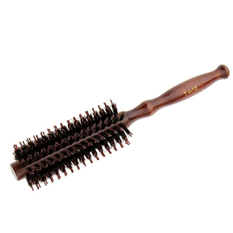 法律によりディスカウント変成器Baosity ロールブラシ ヘアブラシ ヘアコーム 木製ハンドル カール 巻き髪 櫛 くし 便利 2タイプ選べる - #2