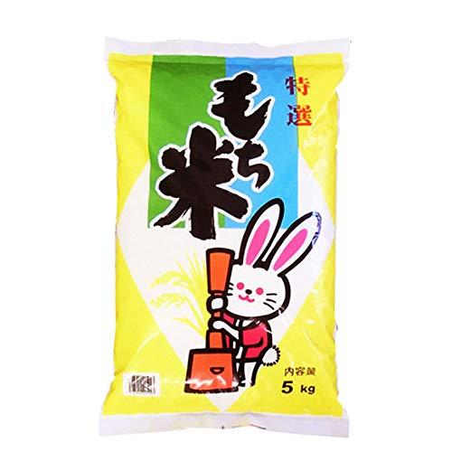 【玄米】山形県産 玄米 もち米 ヒメノモチ 5kg(長期保存包装)x1袋 平成30年産