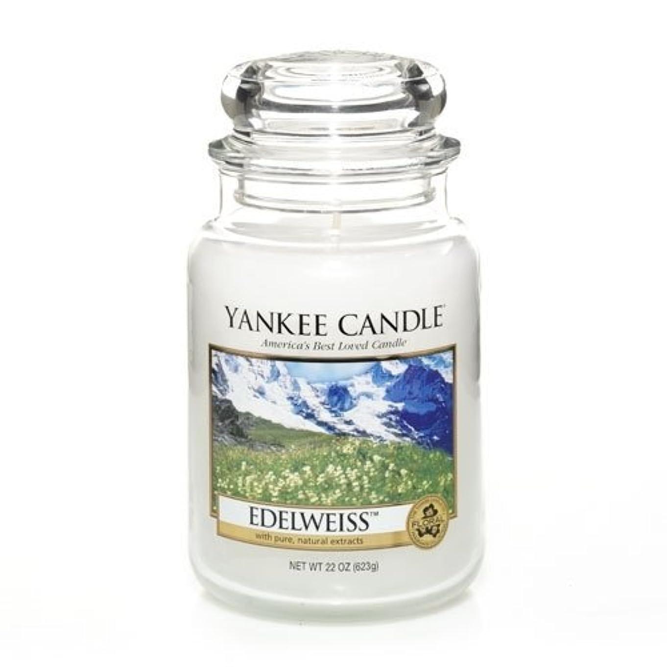 オークランド最適姿を消すYankee Candle EDELWEISS Large Jar, Food & Spice香り