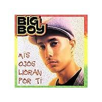 Mr Big 2 [DVD]