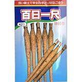 【種子】ごぼう・百日一尺 10ml