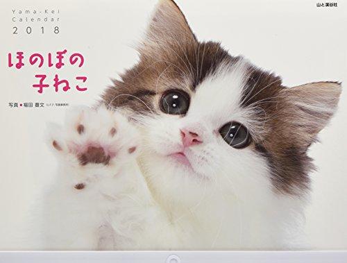 カレンダー2018 ほのぼの子ねこ (ヤマケイカレンダー2018)