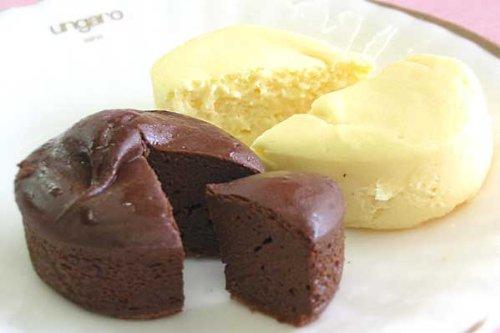 濃厚 ミニケーキ 生チョコ焼き (ギフト用・10個入り 【チョコ×5 チーズ×5】)