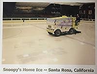Snoopy's Home Ice Santa Rosa,California限定★ポストカード Snoopy's Zamboni Machine★シュルツミュージアム サンタローザ(並行輸入品)