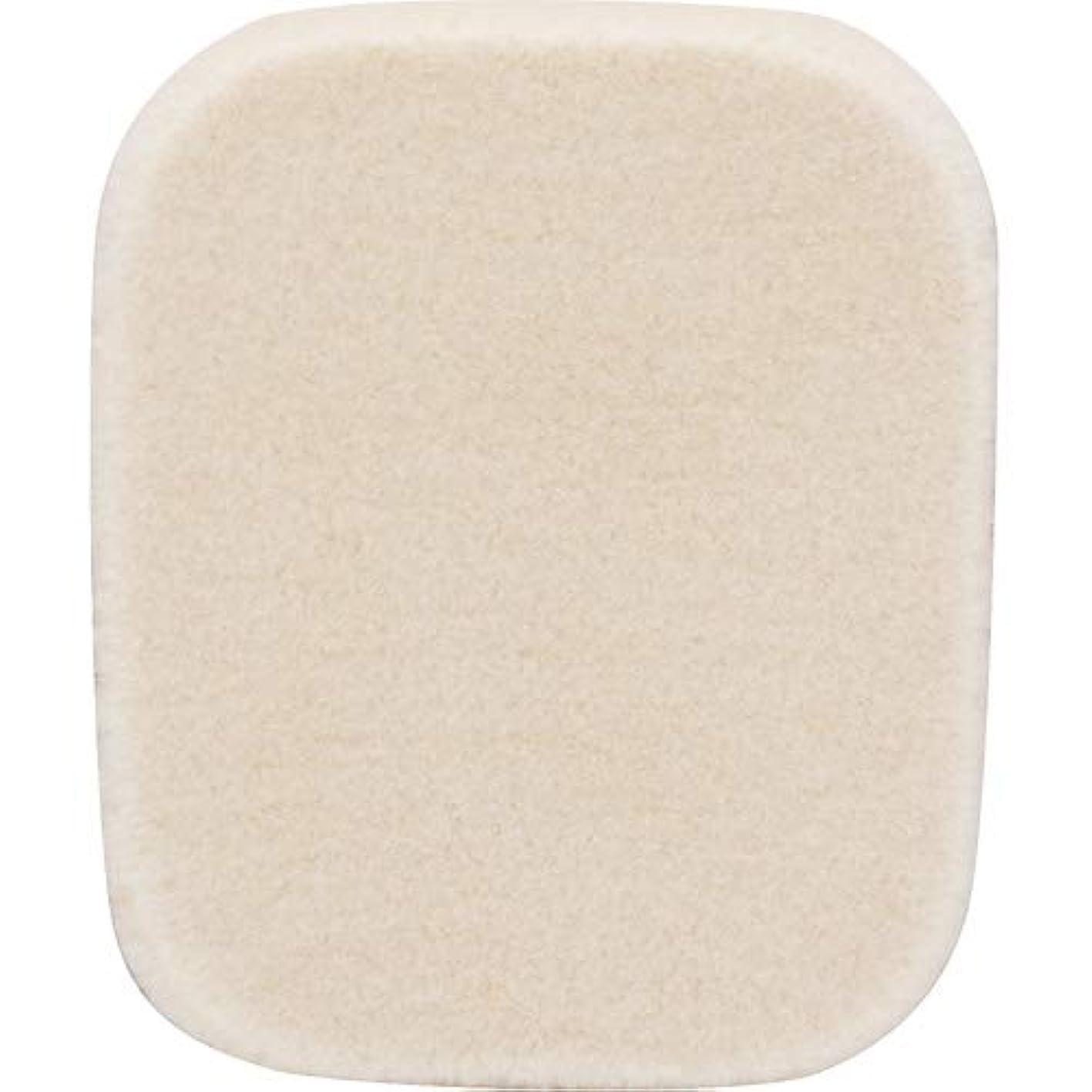 絶壁探検枕ETVOS(エトヴォス) シフォンパフ 直径5.3cm メイク用スポンジパフ タイムレスフォギー(シマー)用
