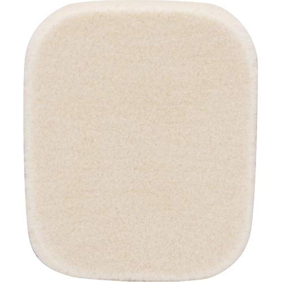 排出お風呂を持っている同情的ETVOS(エトヴォス) シフォンパフ 直径5.3cm メイク用スポンジパフ タイムレスフォギー(シマー)用