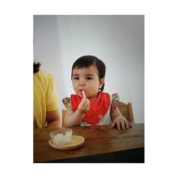 ピジョン 赤ちゃんのぷちアイス 3食分×2袋の紹介画像4