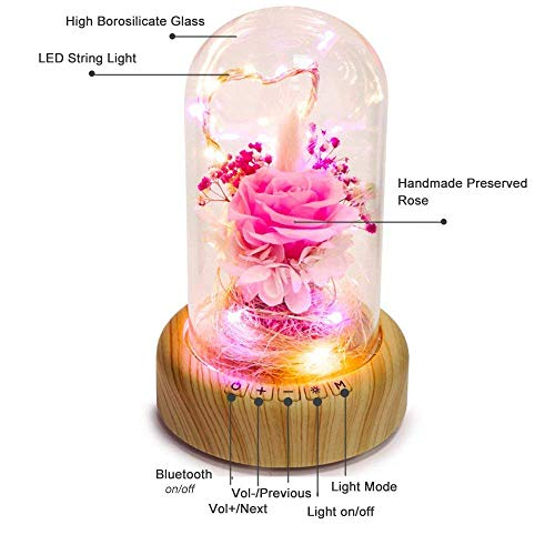 SWEETIME LED Pink Rose Night Light, Eternal Rose Bedside Lamp with Bluetooth Speaker, Enchanted Rose in Glass Dome, Fantastic Decor and Gift for Wedding Anniversary, Christmas & Birthday.