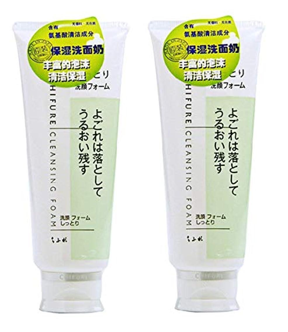 囲いスーパー開発【2個セット】ちふれ化粧品 洗顔フォームしっとり 150g×2