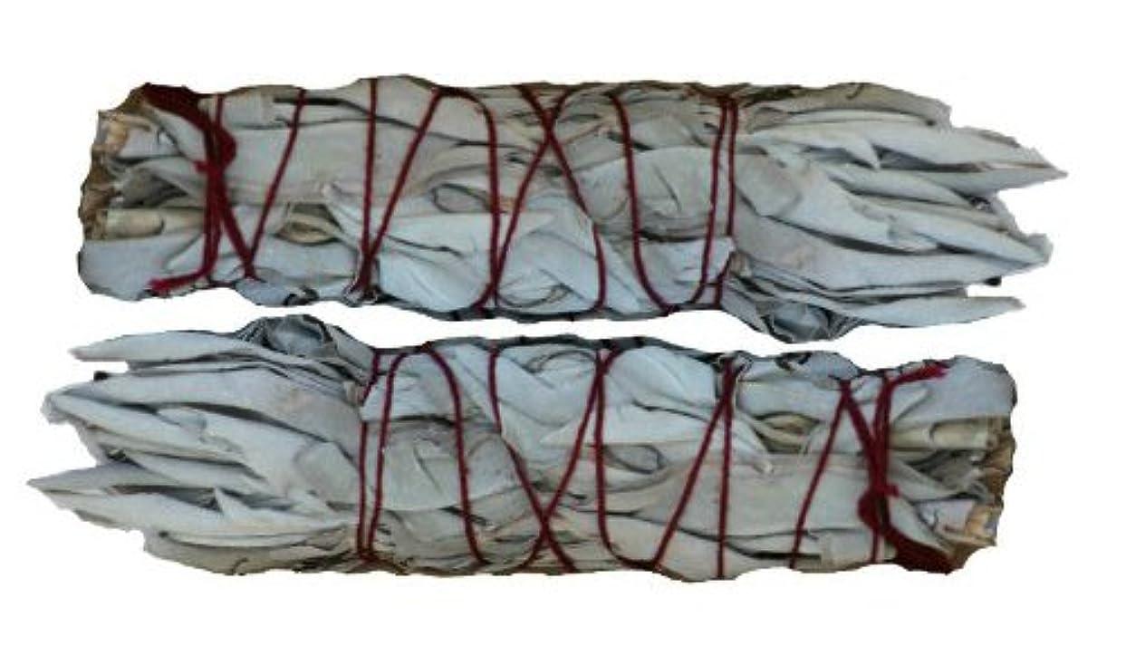 お誕生日変動するフラフープSKホワイトセージスマッジスティック – Mini ( 4インチ- 5インチ) – 2パック