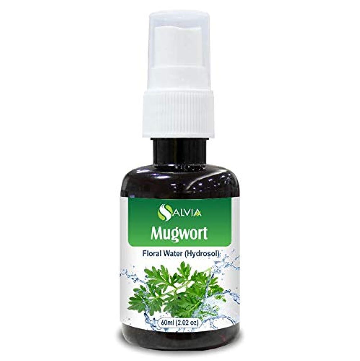 登るきゅうり食事Mugwort Floral Water 60ml (Hydrosol) 100% Pure And Natural
