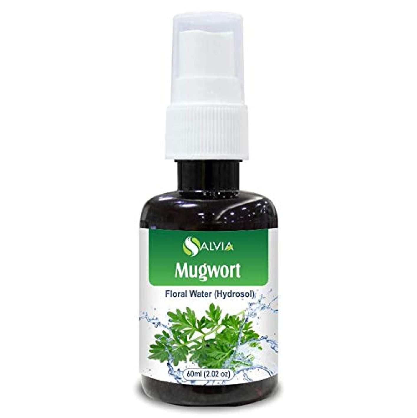 に慣れバウンス選出するMugwort Floral Water 60ml (Hydrosol) 100% Pure And Natural