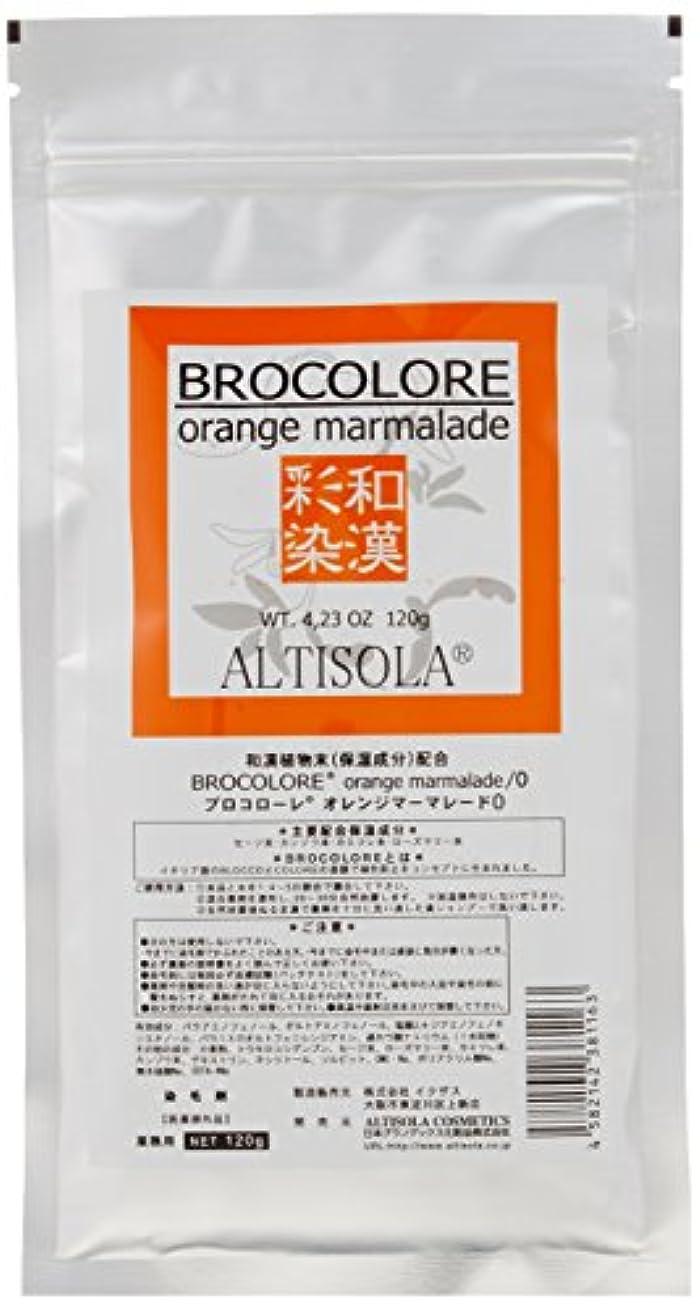 実行するこねるアメリカグランデックス 和漢彩染 ブロコローレ オレンジマーマレード 120g