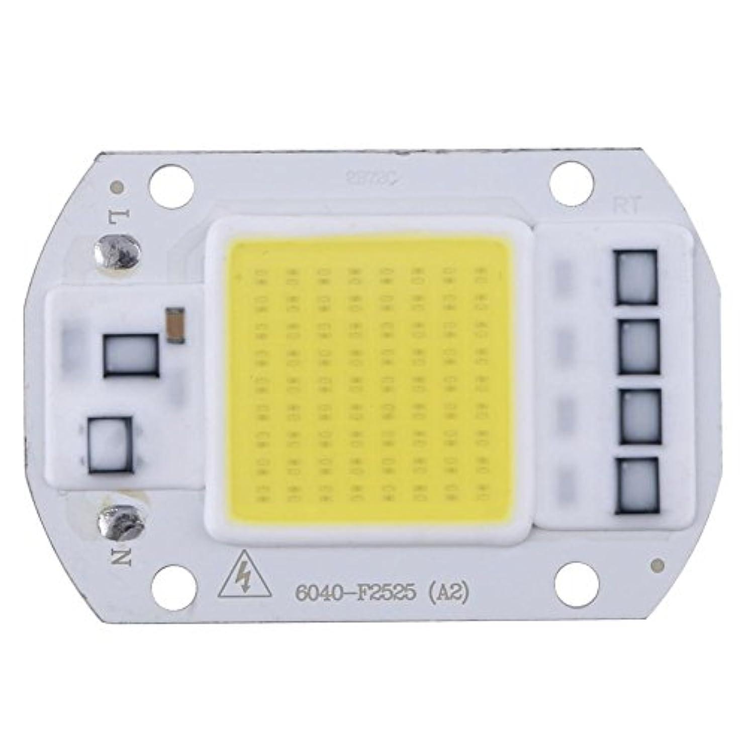 数利用可能宙返りK-outdoor LED作業灯 ライトバー LEDワークライト50W 110V DIY トラック用品 サーチライト ワークライト 車外灯 汎用作業灯 集魚灯 前照灯