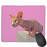 Cheng xiao Mouse Pad Cute Canada Cat Graphics Rectangle Rubber Mousepad Non-toxic Print Gaming Mouse Pad with Black Lock Edge,9.8 * 11.8 in,ベーシック マウスパッド ゲーム用 標準サイズ