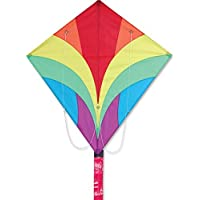Ace Kite - Rainbow by Premier Kites [並行輸入品]