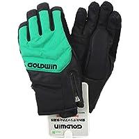 15-16 GOLODWINゴールドウィン メンズスキーグローブ 「Snow Squad Glove」G81504P