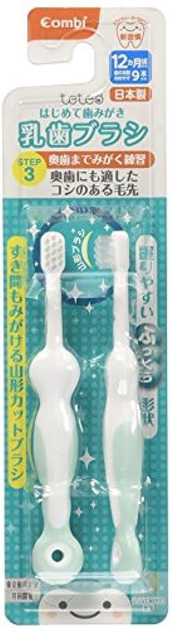 コンビ Combi テテオ teteo はじめて歯みがき 乳歯ブラシ STEP3 (歯の本数の目安:9本以上) 自分で奥歯まで磨く練習に