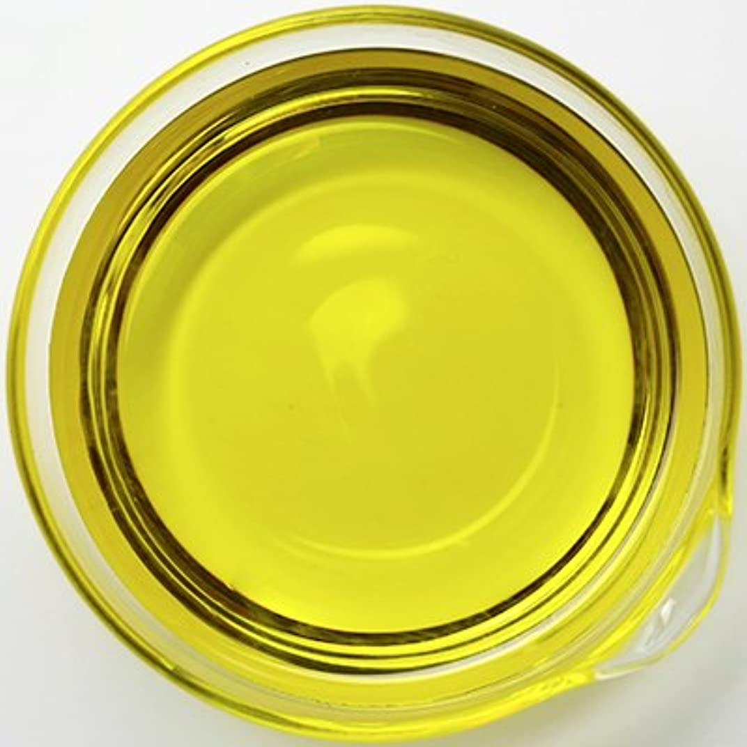 お酢全くそれからオーガニック アルニカオイル [アルニカ抽出油] 1L 【アルニカ油/手作り石鹸/手作りコスメ/美容オイル/キャリアオイル/マッサージオイル】