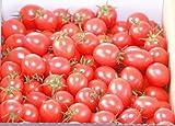 濃厚フルーツミニトマト【甘っこ】 (1kg入り2箱) リピート率約90%好評品