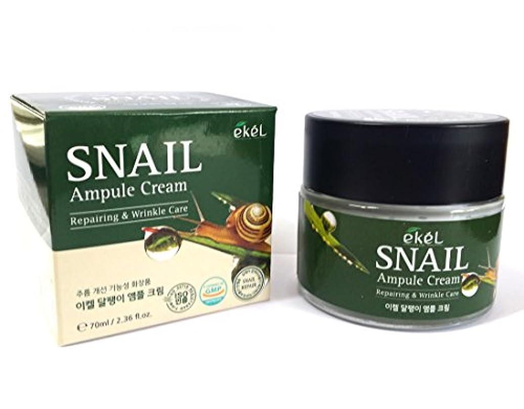 アブストラクト永久にチート[EKEL] カタツムリアンプルクリーム70ml / Snail Ampule Cream 70ml / / リペアリング&リンクルケア / ハイドレーティングクリーム / Repairing & Wrinkle Care...