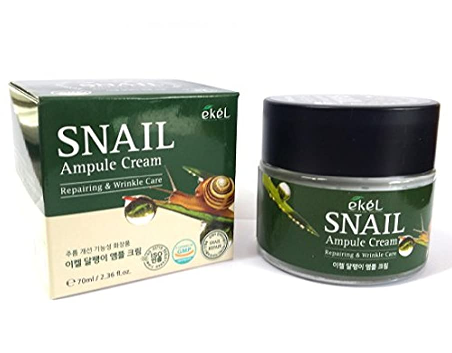 電気的半径ラッシュ[EKEL] カタツムリアンプルクリーム70ml / Snail Ampule Cream 70ml / / リペアリング&リンクルケア / ハイドレーティングクリーム / Repairing & Wrinkle Care...