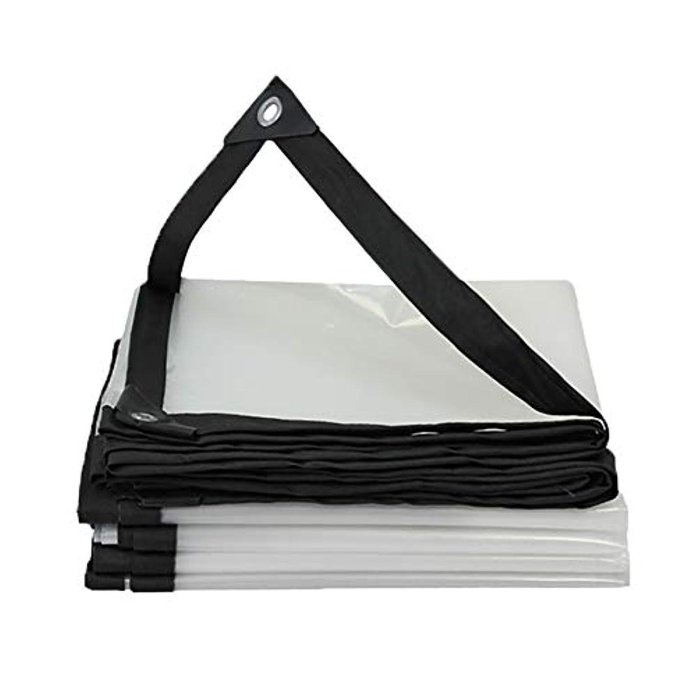 破裂ピース暗唱するSHYPwM 防水防水シート、透明な日よけ、バルコニー窓の防水防水ポンチョの家庭用多目的テント、120 G/平方メートル (サイズ さいず : 2x6m)