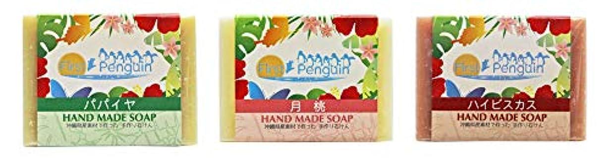 うまくいけば多様な賞賛する手作り洗顔石けん (パパイヤ、月桃、ハイビスカス)