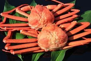 訳あり 【鳥取県境港産】ボイル紅ずわいがに A級品・B級品混合セット(8〜10枚・約3kg) -