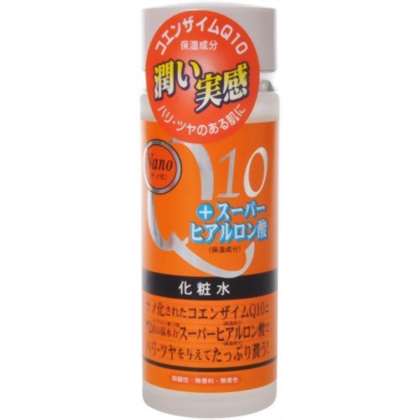 逃げる前述の宣言ナノ化?コエンザイムQ10&スーパーヒアルロン酸化粧水 120ml